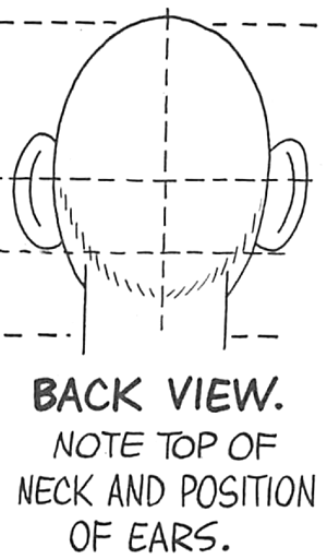 Draw Cartoon Faces Heads from Back Views and Angles