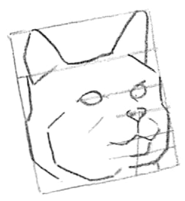 Step 3 How to Draw Cats and Kittens Faces adn Heads Lesson