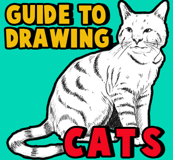 How to Draw Cats and Kittens with easy step by step drawing tutorial
