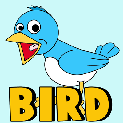 How to Draw Cartoon Birds with Easy Step by Step Drawing Tutorial