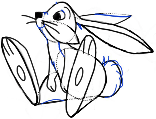 Step 10 : Drawing Cartoon Bunny Rabbit with Easy Steps