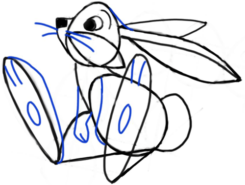 Step 9 : Drawing Cartoon Bunny Rabbit with Easy Steps