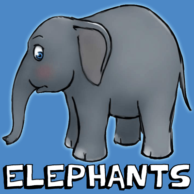 How to Draw Cartoon Elephants with Easy Step by Step Drawing Tutorial