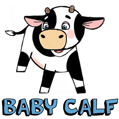 How to Draw Baby Cows ... aka Calf ... with Step by Step Drawing Tutorial
