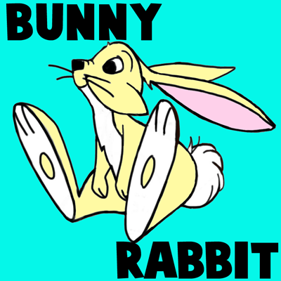 How to Draw Cartoon Bunny Rabbits and Hares with Simple Step by Step Drawing Lesson