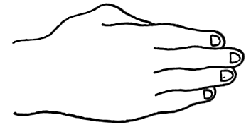 Drawing Back of Hands and Fingers in Different Poses Lessons