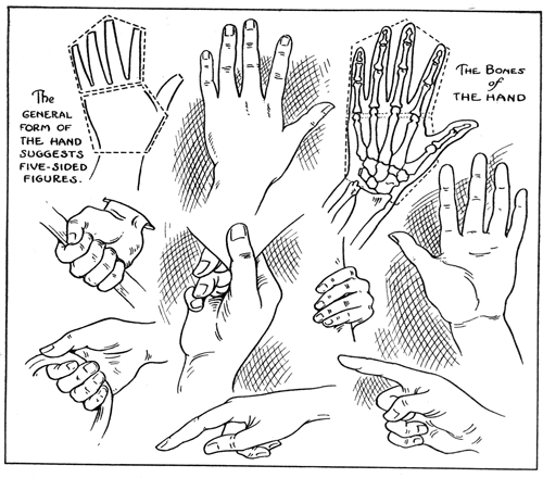 learn how to draw hands with drawing lesson hands positions