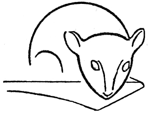 Step 3 : Drawing Mice and Mouse Lessons