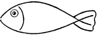 How To Draw Fish In Easy To Follow Steps Drawing Lesson How To