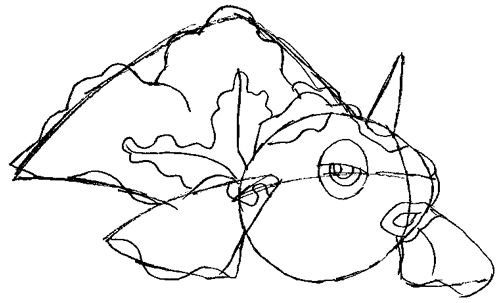 Step 5 : Drawing Goldeen Step by Step Drawing Lesson