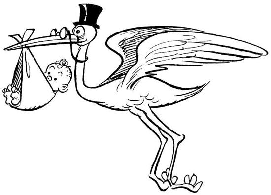 How to Draw Cartoon Stork Holding Newborn Baby Drawing Tutorial