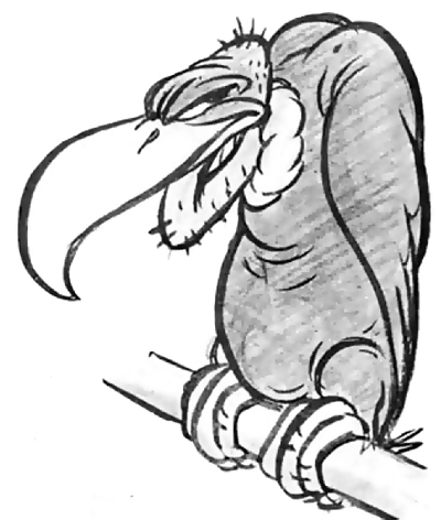 How to Draw Cartoon Vultures in Easy Steps Drawing Tutorial