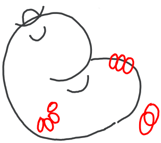 Step 4 : Drawing Mr. Lazy from Mr. Men in step by step tutorial