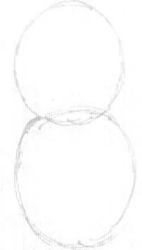Step 1 : Drawing a Cartoon Beaver Step by Step Tutorial
