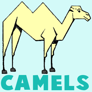 Drawing Camels With Easy Steps Instructional Lesson For Beginners