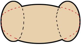 Step 1 : Drawing Cartoon Rams Tutorials