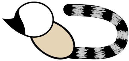 Step 3 : Drawing Cartoon Lemurs Step by Step