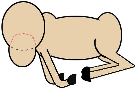 Step 4 : Drawing Cartoon Rams Tutorials