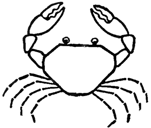 Step 4 : Drawing Cartoon Crabs Step by Step Tutorial