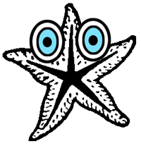 Step 6 : Drawing Starfish in Easy Steps Tutorial
