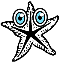 Step 7 : Drawing Starfish in Easy Steps Tutorial