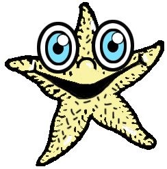 Step 8 : Drawing Starfish in Easy Steps Tutorial