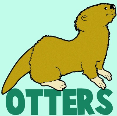 How to Draw Cartoon Otters with Easy Instructional Step by Step Drawing Tutorial