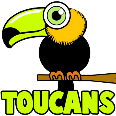 How to Draw Cartoon Toucans with Easy Step by Step Drawing Tutorial
