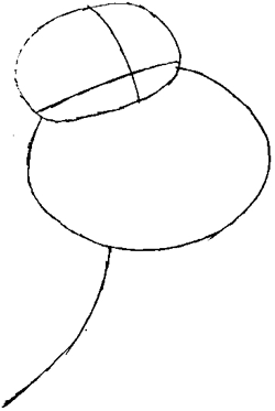 Step 1 : Drawing Glenn Quagmire Step by Step Lesson