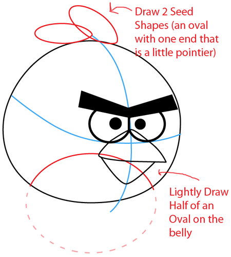 Step 5 : Drawing Red Angry Bird in Easy Steps Lesson