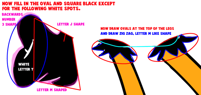 Step 5 : Drawing Daffy Duck from Looney Tunes Easy Steps Lesson