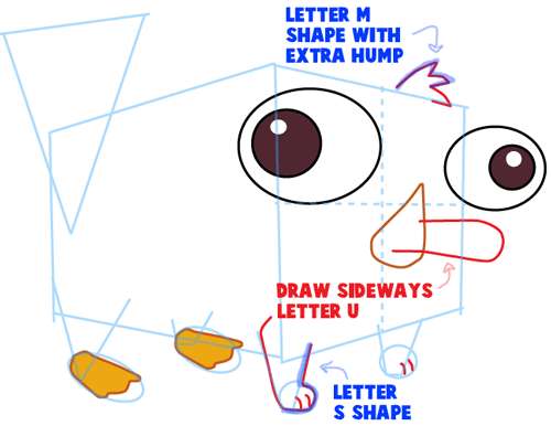 Step 7 : Drawing Baby Perry the Platypus from Phineas and Ferb Easy Steps Lesson