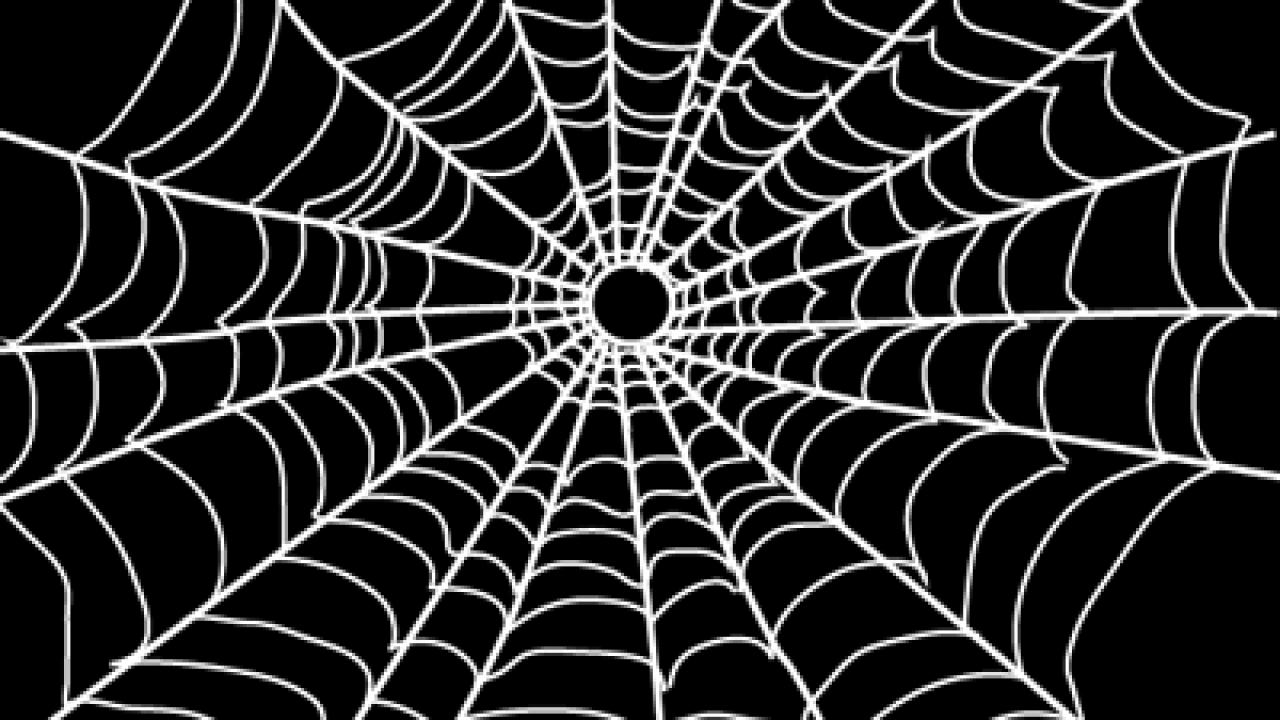 Lego White Spider Web w// Black Spiders