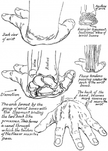 Techniques for Drawing Hands