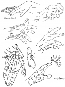 Learn how to draw hands