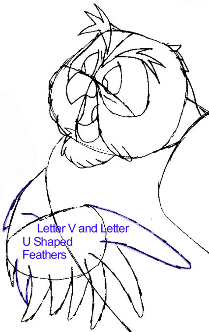 Step 7 : Drawing Owl from Winnie The Pooh in Easy Steps Lesson