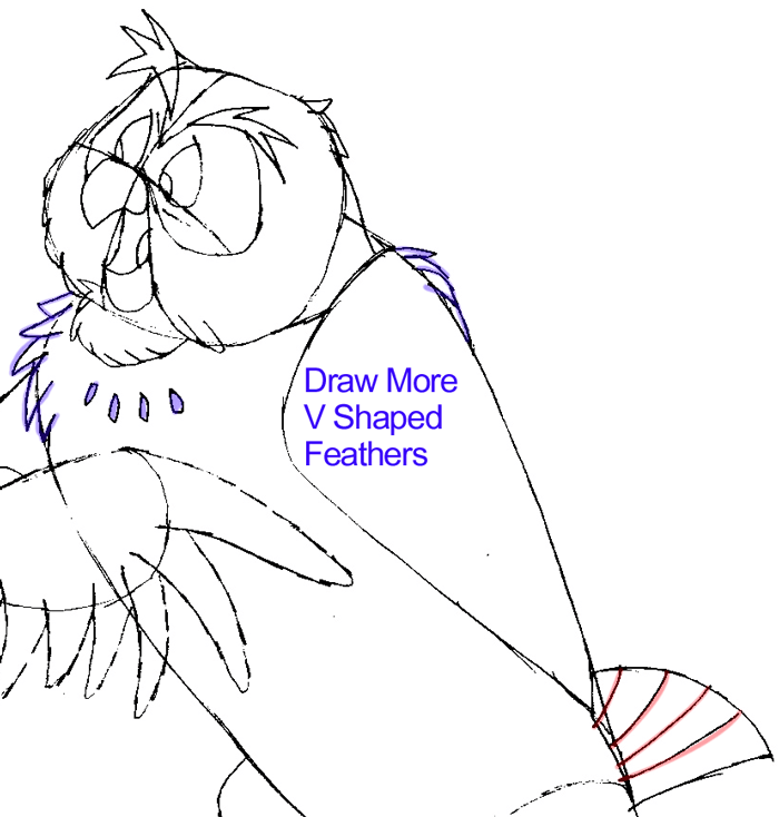 Step 8 : Drawing Owl from Winnie The Pooh in Easy Steps Lesson