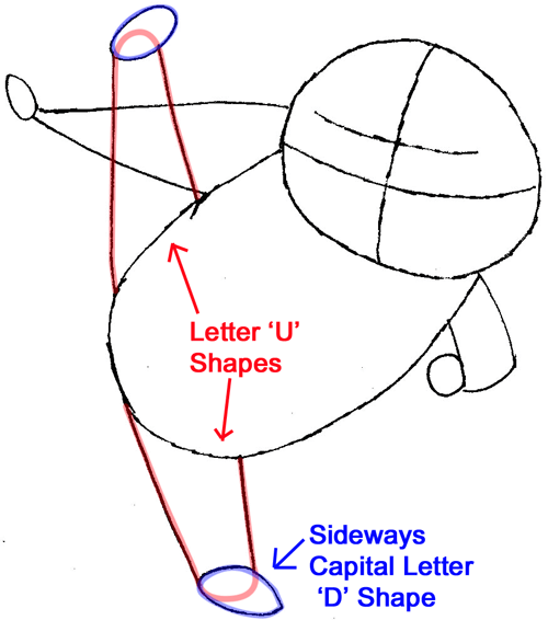 Step 4 : Drawing Master Shifu from Kung Fu Panda in Easy Steps Lesson