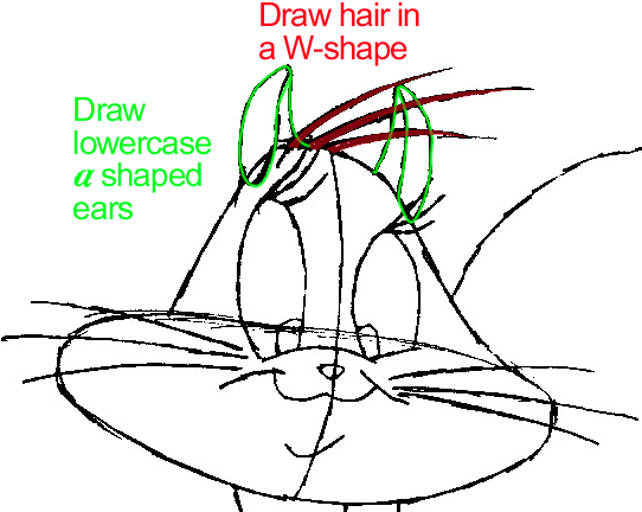 Step 7 : Drawing Penelope Pussycat from Looney Tunes in Easy Steps Lesson