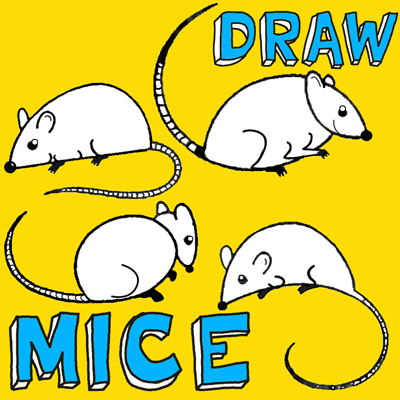 How to draw Cartoon Mice with easy step by step drawing tutorial