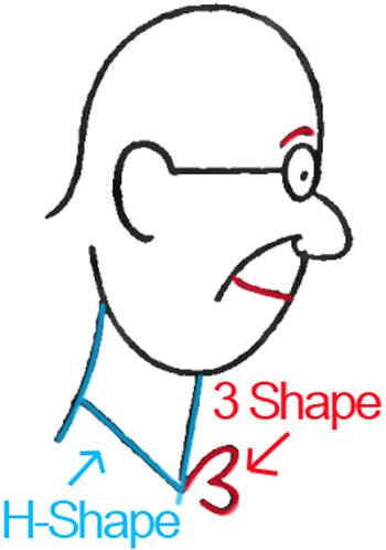 Face A - Step 5 : Drawing Cartoon Face Profiles in Easy Steps Lesson