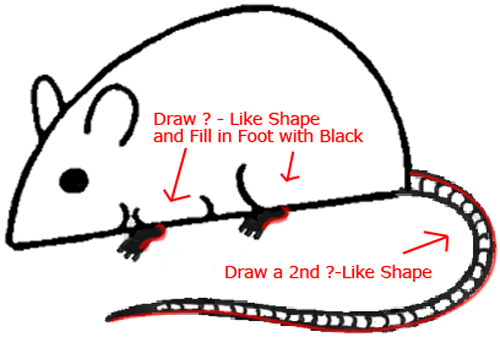 Mouse A - Step 5 : Drawing Cartoon Mice in Easy Steps Lesson