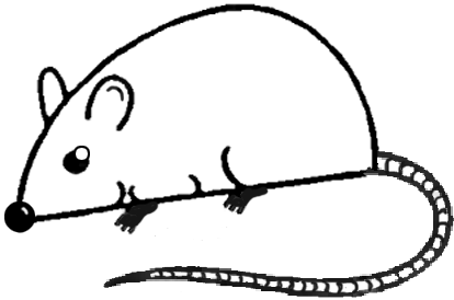 Big Guide To Drawing Cartoon Mice With Basic Shapes For Kids besides Littlewoods besides What Do The Bahai Symbols Mean further Sf And Kaizen Not All Small Steps Are Equal furthermore What Is Pcd. on two way