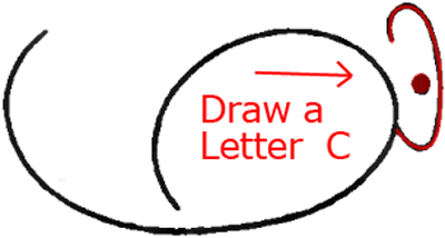 Mouse B - Step 2 : Drawing Cartoon Mice in Easy Steps Lesson