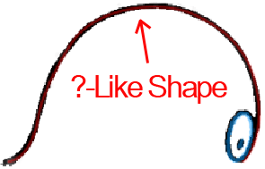 Face C - Step 1 : Drawing Cartoon Face Profiles in Easy Steps Lesson