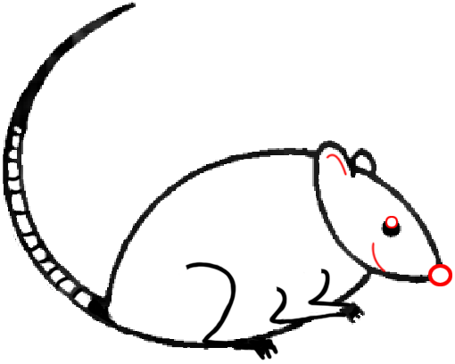 Mouse C - Step 5 : Drawing Cartoon Mice in Easy Steps Lesson