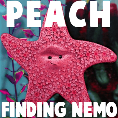 How to draw Peach from Finding Nemo with easy step by step drawing tutorial