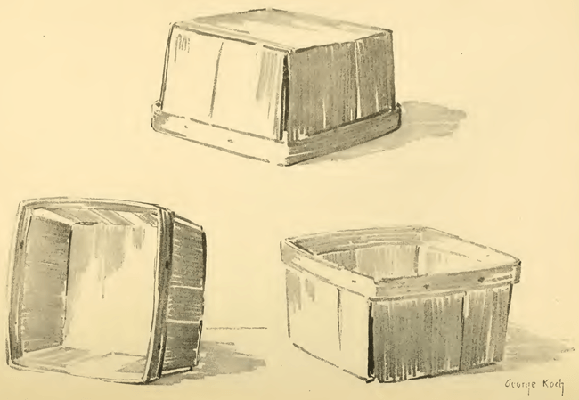 Above are several sketches may be made of a strawberry basket in various positions