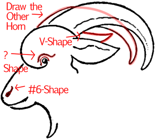 Step 6 : Drawing a Goat Face in Easy Steps Lesson