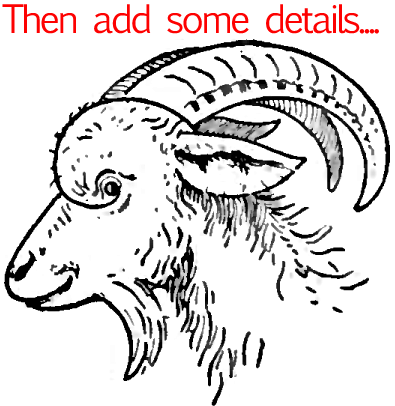 Step 7 : Drawing a Goat Face in Easy Steps Lesson